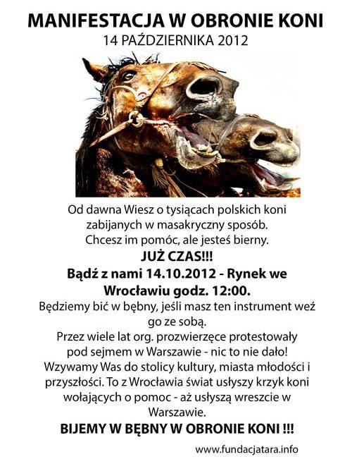 Manifestacja w obronie koni