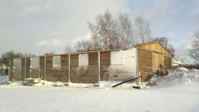 Pomóż odbudować fundacyjną stajnię! Wichura zerwała dach!