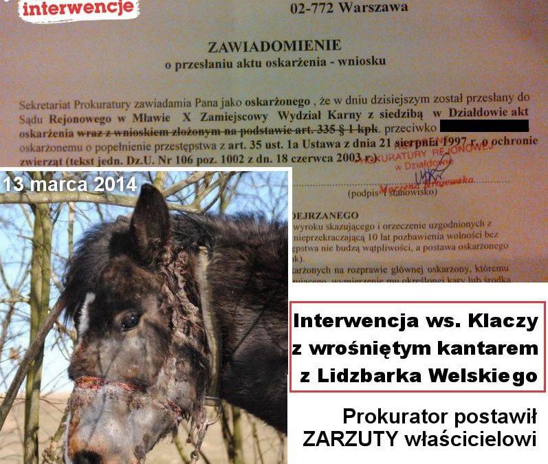 Interwencja w Lidzbarku nie poszła na marne!