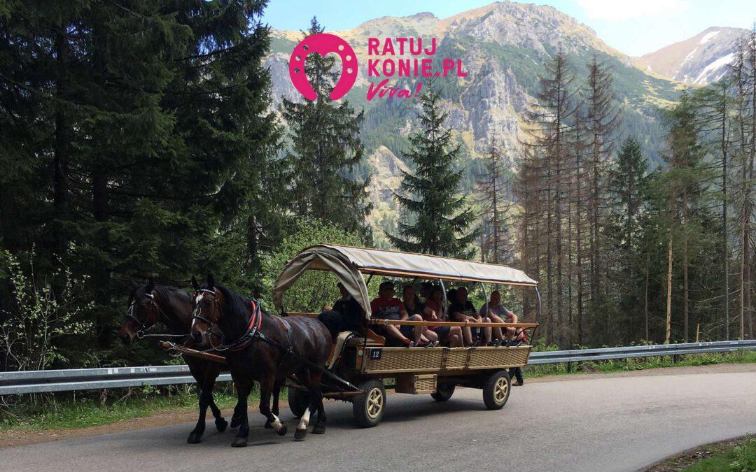 Transport konny zanieczyszcza teren parku narodowego!