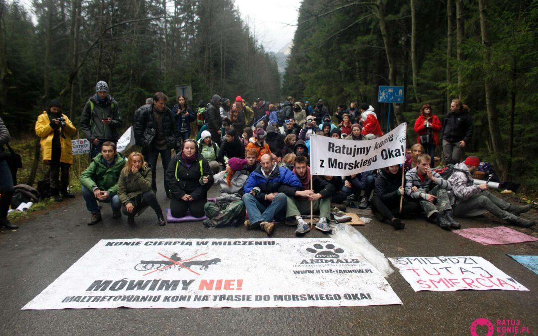 Protestujący na trasie do Morskiego Oka uniewinnieni
