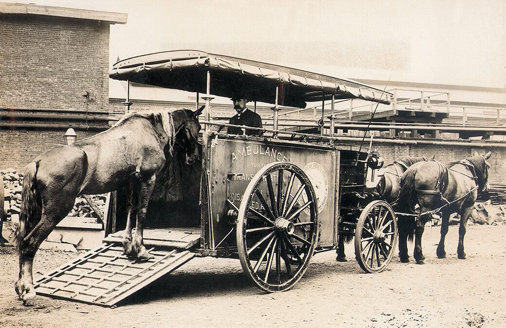 Jak cierpienie koni poruszyło Amerykę do walki o prawa zwierząt