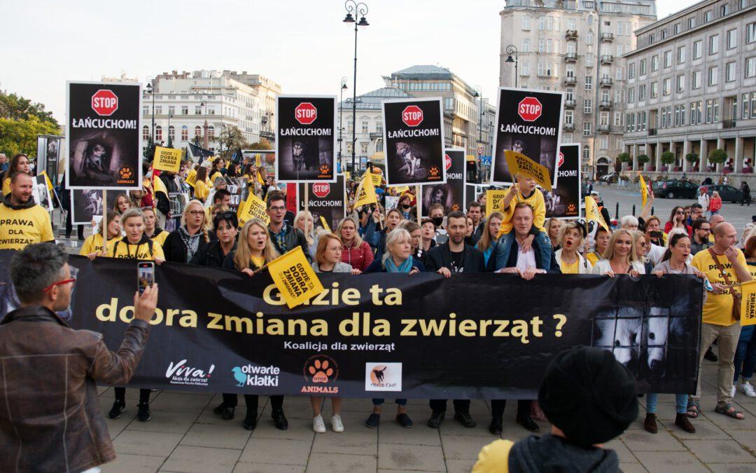 Wielki Marsz dla zwierząt przeszedł pod Sejm i Ministerstwo Rolnictwa